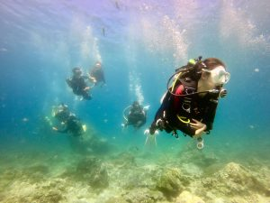 綠島潛水|考PADI OW水肺證照、體驗潛水旅宿推薦:海子Ocean Rover